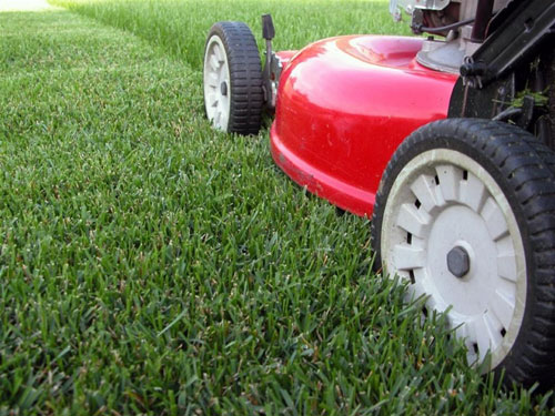 lawn-mower1